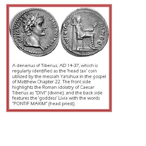 Prince William the Little Horn described in Daniel